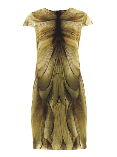 Alexander McQueen dragonfly wing dress