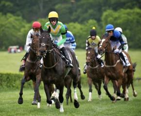 Iroquois Steeplechase – Pre Coverage